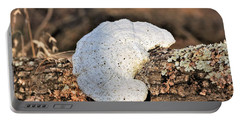 Portable Battery Charger featuring the photograph White Bracket Fungus On Log by Sheila Brown