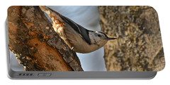 White Breasted Nuthatch 370 Portable Battery Charger by Michael Peychich