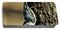 White-breasted Nuthatch On Tree Portable Battery Charger