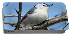White-breasted Nuthatch Perched Portable Battery Charger
