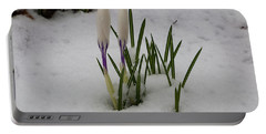 White Crocus In Snow Portable Battery Charger