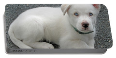 White Dog Blue Eyes Portable Battery Charger