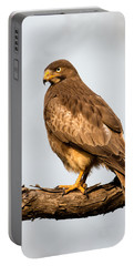 White-eyed Buzzard Butastur Teesa Portable Battery Charger by Panoramic Images