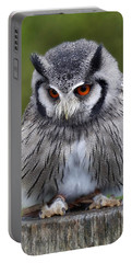 White Faced Owl Portable Battery Charger