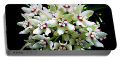 White Flowers Of Paleaku Gardens Portable Battery Charger