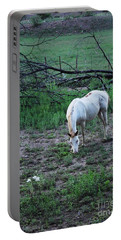 Portable Battery Charger featuring the photograph White Horse And A White Flower by Natalie Ortiz