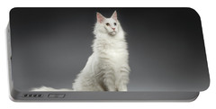 White Huge Maine Coon Cat On Gray Background Portable Battery Charger