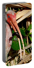 White Ibis Eating Crayfish Portable Battery Charger