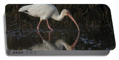 White Ibis Feeding In Morning Light Portable Battery Charger