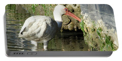 White Ibis Headed Home Portable Battery Charger