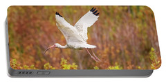 White Ibis In Hilton Head Island Portable Battery Charger