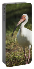 White Ibis On A Walk  Portable Battery Charger by Saija  Lehtonen