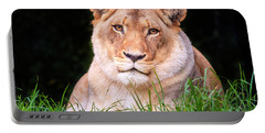 Portable Battery Charger featuring the photograph White Lion by Alexey Stiop