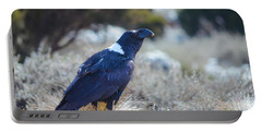 Portable Battery Charger featuring the photograph White-necked Raven Camping Out On Kilimanjaro by Jeff at JSJ Photography