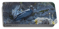 Portable Battery Charger featuring the photograph White-necked Raven With Kilimanjaro Flowers  by Jeff at JSJ Photography