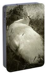 Portable Battery Charger featuring the photograph White Peacock Lounging In The Shade by Katie Wing Vigil