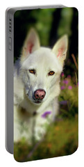 White Shepherd Dog Posing In The Sunlight Portable Battery Charger