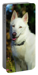 White Shepherd In The Sunlight Portable Battery Charger