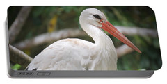 Portable Battery Charger featuring the photograph White Stork Portrait by Judy Kay