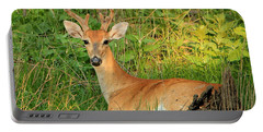 White-tail Buck Resting Portable Battery Charger