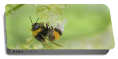White-tailed Bumblebee - Bombus Lucorum Portable Battery Charger