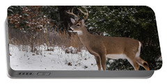 White-tailed Deer - 8904 Portable Battery Charger