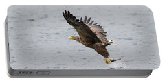 White-tailed Eagle Catching Dinner Portable Battery Charger