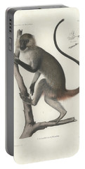 White Throated Guenon, Cercopithecus Albogularis Erythrarchus Portable Battery Charger