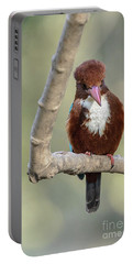 White-throated Kingfisher 01 Portable Battery Charger