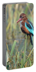 White-throated Kingfisher 13 Portable Battery Charger