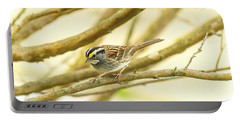 White Throated Sparrow Portable Battery Charger