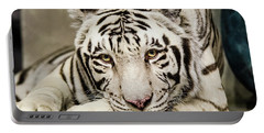 White Tiger Looking At You Portable Battery Charger