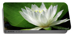 White Water Lily Blooms Portable Battery Charger