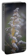 White Weeds In Winter, Oak Grove Park, Grapevine, Texas Portable Battery Charger