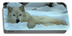 Gray Wolf Winter Nap Portable Battery Charger
