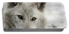 Portable Battery Charger featuring the photograph White Wolf II by Brad Allen Fine Art