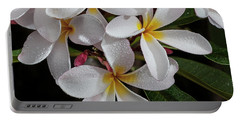 White/yellow Plumerias In Bloom Portable Battery Charger