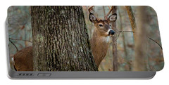 Whitetail #31 Portable Battery Charger