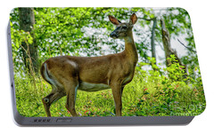 Portable Battery Charger featuring the photograph Whitetail Deer  by Thomas R Fletcher