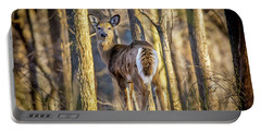 Whitetail Winter Morning Portable Battery Charger