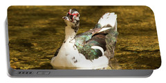 Who Me Wildlife Art By Kaylyn Franks Portable Battery Charger