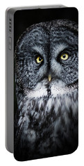 Whooo Are You Looking At? Portable Battery Charger