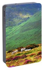 Portable Battery Charger featuring the photograph Wicklow Pastoral by Jenny Rainbow