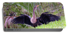 Portable Battery Charger featuring the photograph Wild Birds - Anhinga by Kerri Farley