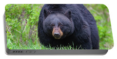 Wild Black Bear Portable Battery Charger