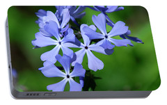 Portable Battery Charger featuring the photograph Wild Blue Phlox Dspf0388 by Gerry Gantt
