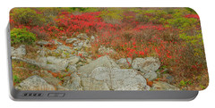 Wild Blueberries Portable Battery Charger