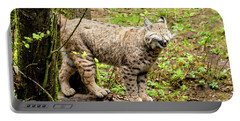Wild Bobcat In Mountain Setting Portable Battery Charger
