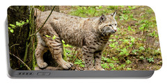Wild Bobcat Portable Battery Charger by Teri Virbickis