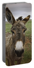 Wild Burro Portable Battery Charger
